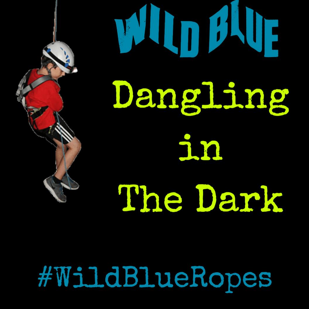 Night Climb, Birthday, Wild Blue Ropes, Climb, Adventure, Charleston, James Island