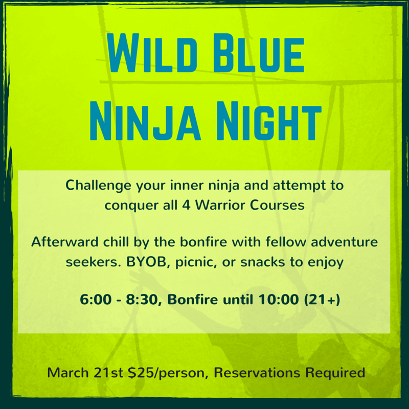 Wild Blue Ropes Ninja Night