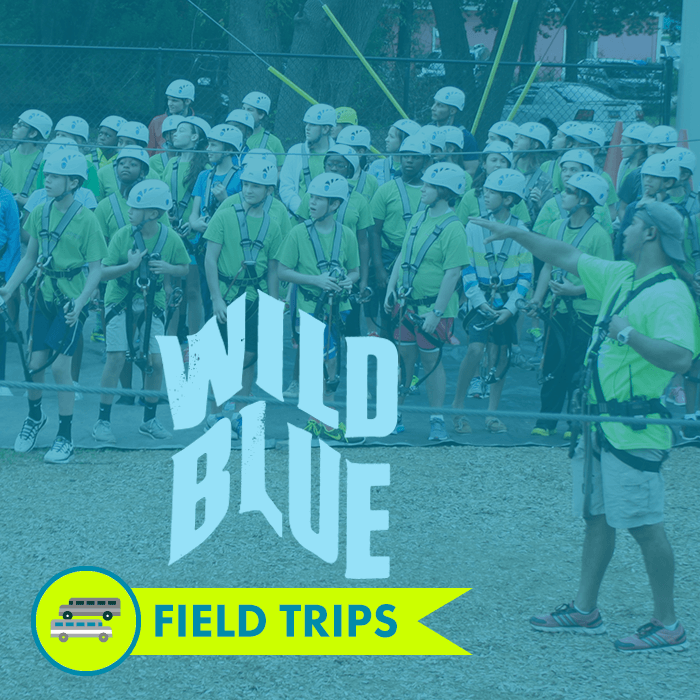 Wild Blue Ropes school field trips
